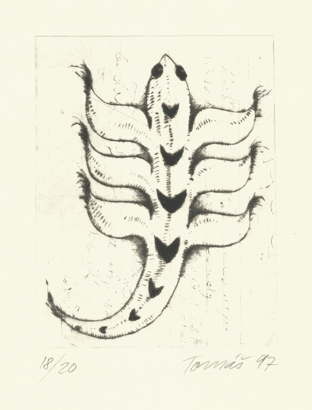 Hřivnáč Tomáš - Old Animal - Print