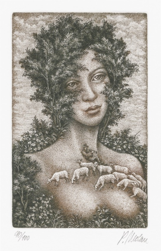 Melan Petr - Counting Sheep - Print