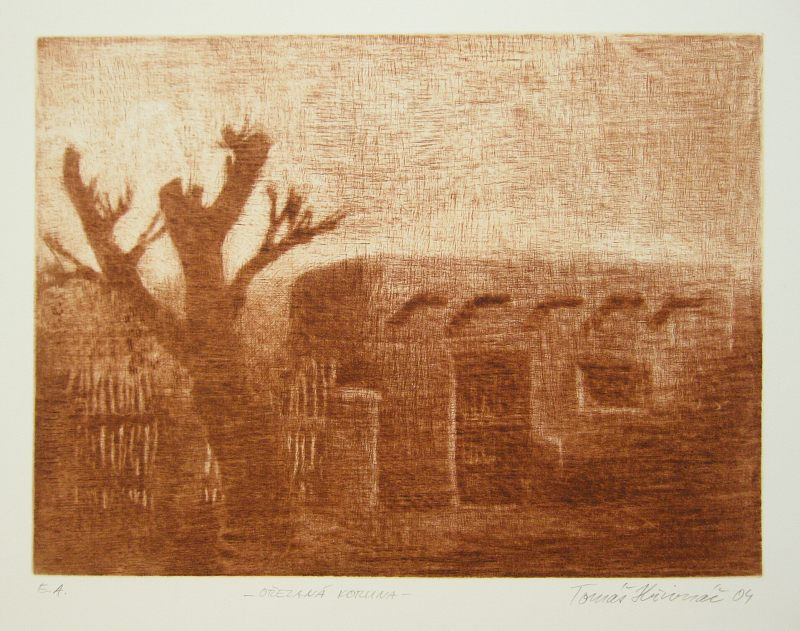 Hřivnáč Tomáš - Pruned Treetop - Print