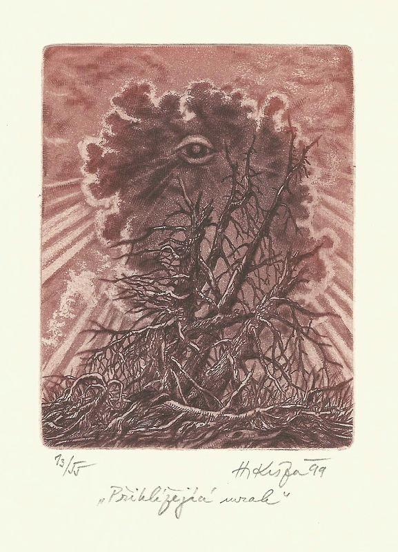 Kisza Herbert - Přihlížející mrak - Grafika