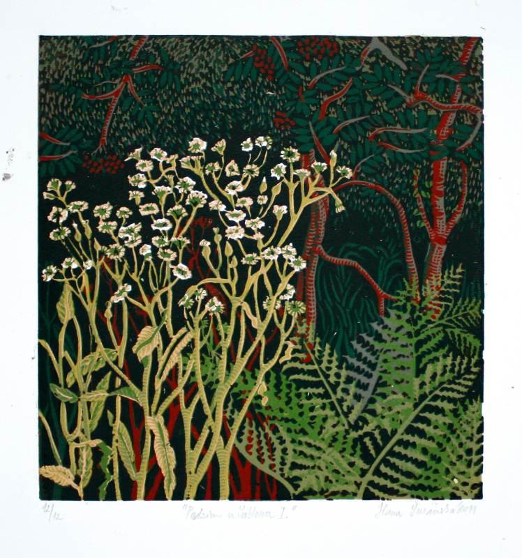 Šuranská Hana  - Podzim u Jablonce I - Grafika