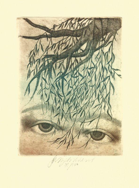 Vychodilová Olga - Eyes - Print