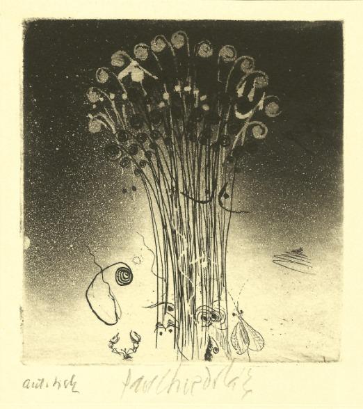 Sukdolák Pavel - Print