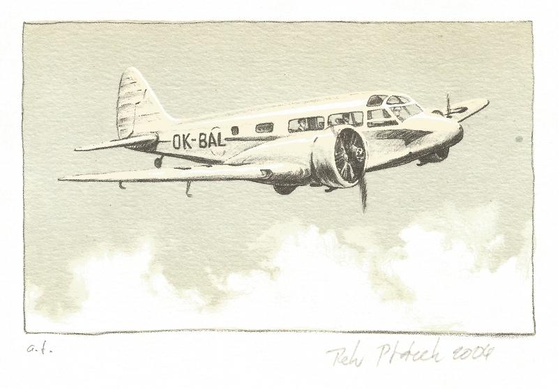 Ptáček Petr - Aerotaxi - Print