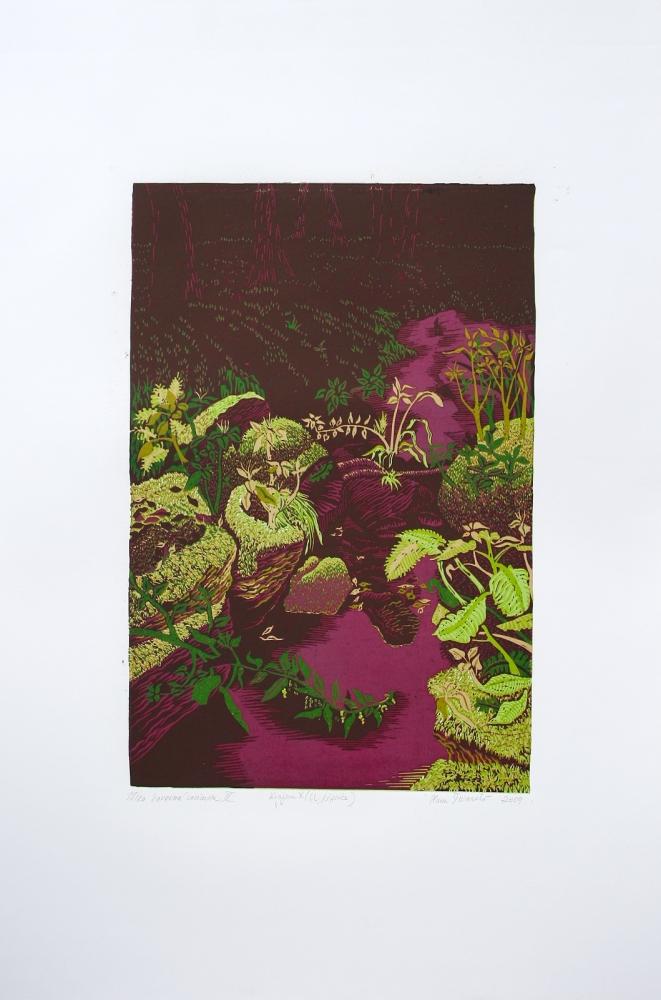 Šuranská Hana  - charitativní aukce - Grafika